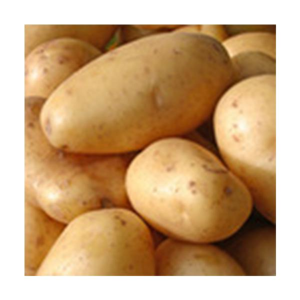 Potato (Dimond)