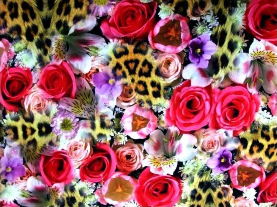 Butterfly digital printed fabrics