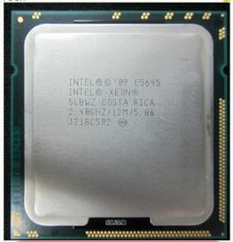 Intel XEON X5675 1366 needle official version
